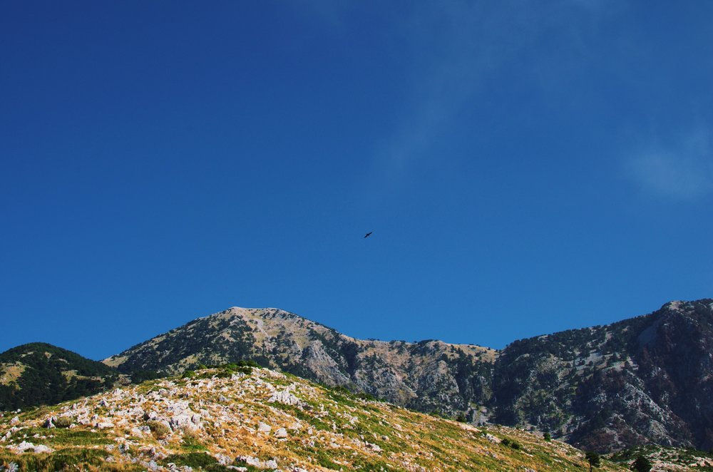Mountains near the Llogara Pass, Albania