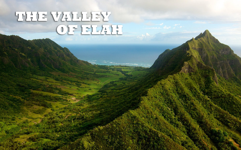 VALLEY OF ELAH.jpg