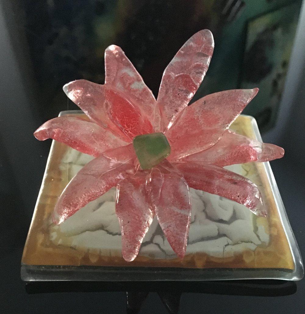 Flor R$ 50.00
