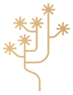 JTG Gold icon only smallest.png