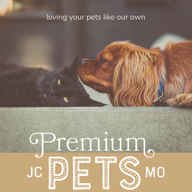 """""""I'm not just another pet store. Think of me as someone who wants to be hands-on and personable when it comes to your pet's health journey.""""Brittany Schlup, Owner"""