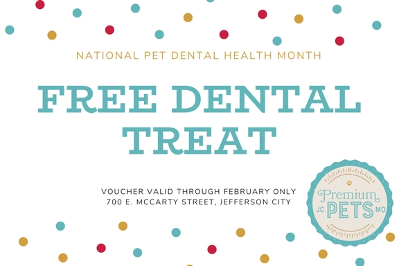Mention this coupon for a FREE DENTAL TREAT!
