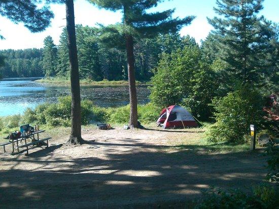 OE3_Algonquin.mew-lake-campground spring.jpg