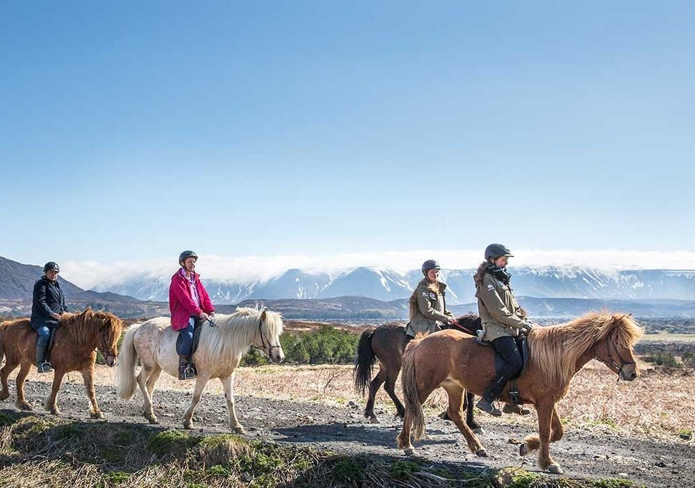 One of the goals of the equestrian program is to develop well-rounded, versatile horsemanship and riding skills so our students can do overnight, and long distance horseback riding trips to places such as iceland, the alberta rockies, and europe.