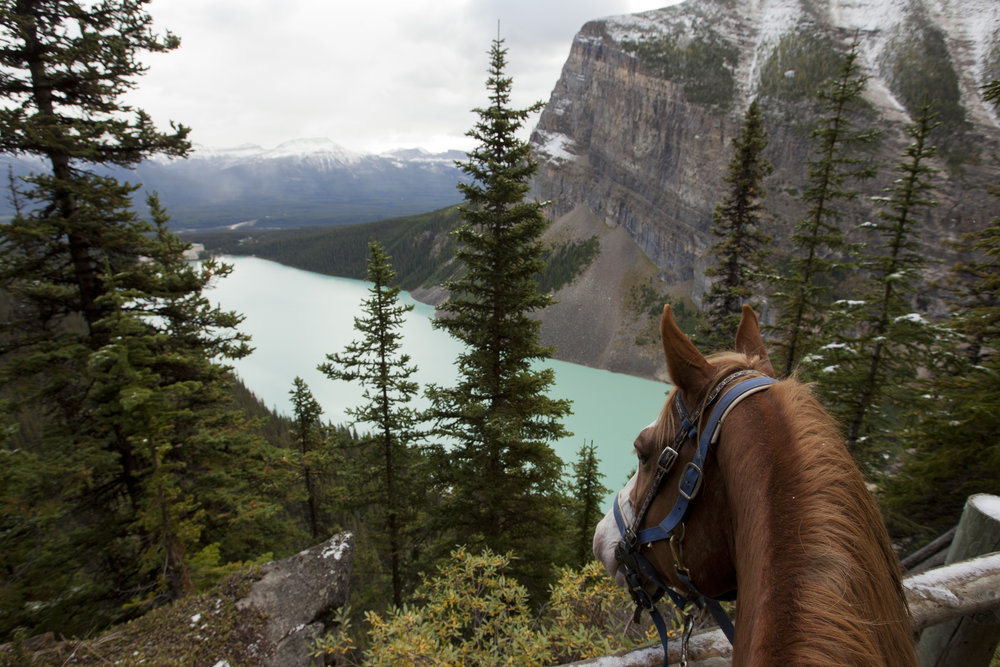 In spring of 2021, OHS students will go on the first Alberta trip - including a 3-5 day overnight horseback riding trip in the Rockies!
