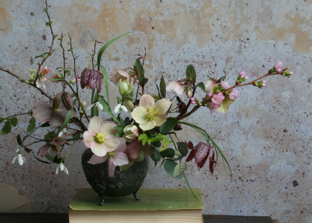Late Hellebores, Galanthus, Fritillaria and Spring flowering Cherry.   Photo by Lucy