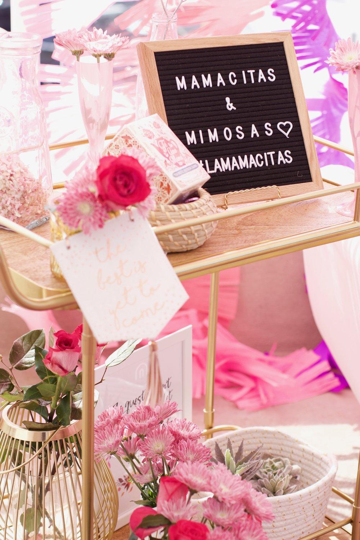 Mamacitas&Mimosas_EVENT_006.jpg