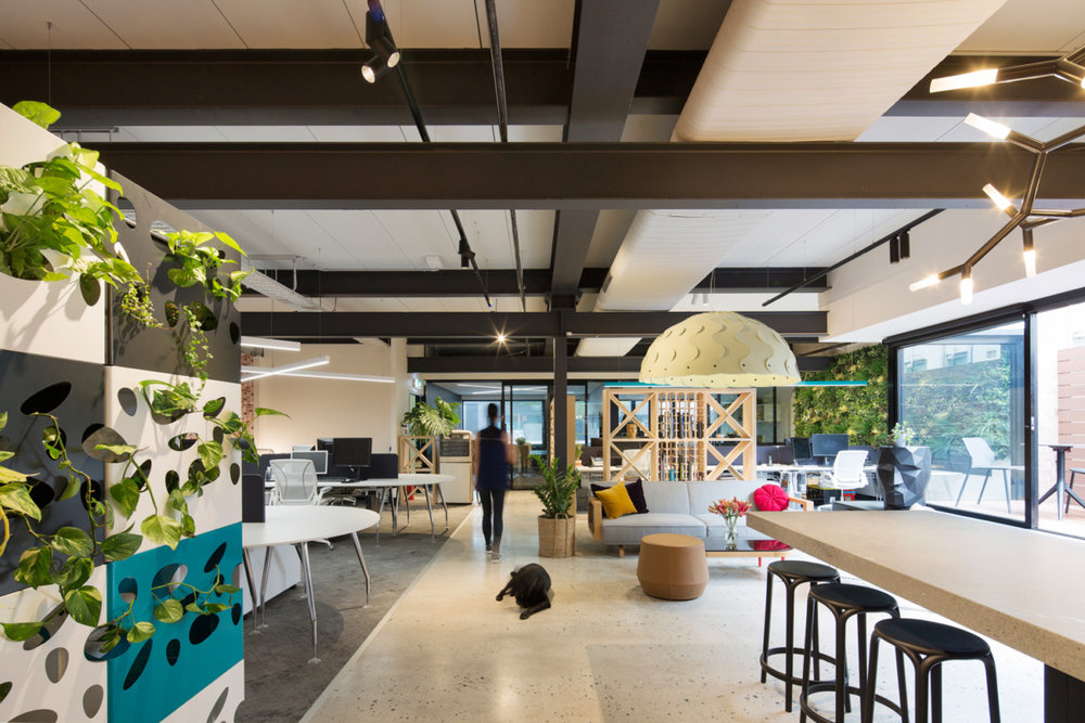 rfa-architects-offices-sydney-1-1200x800.jpg