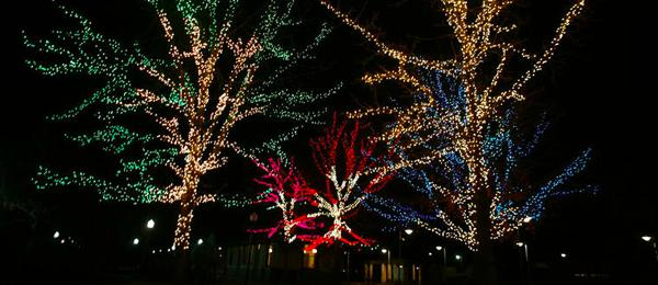 Professional holiday lighting installation and free removal in the Chicago land area.