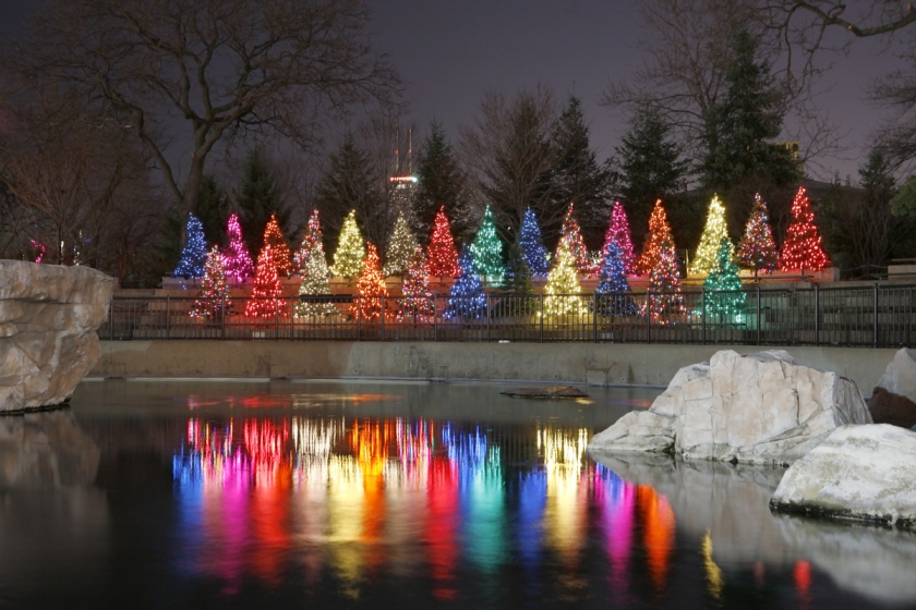 Lighting Chicago's Holiday Season    For Over a Decade   Learn more