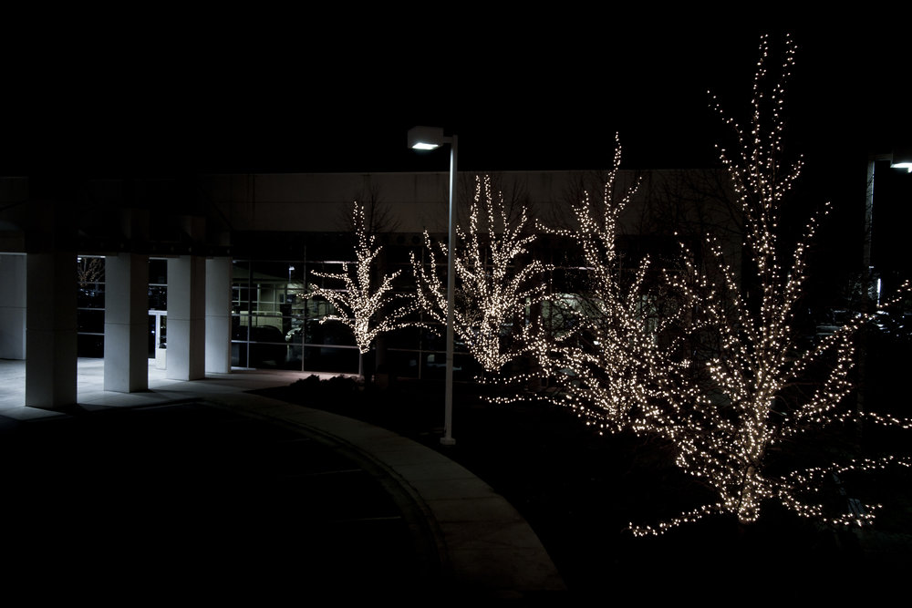 Holiday Lighting for Businesses