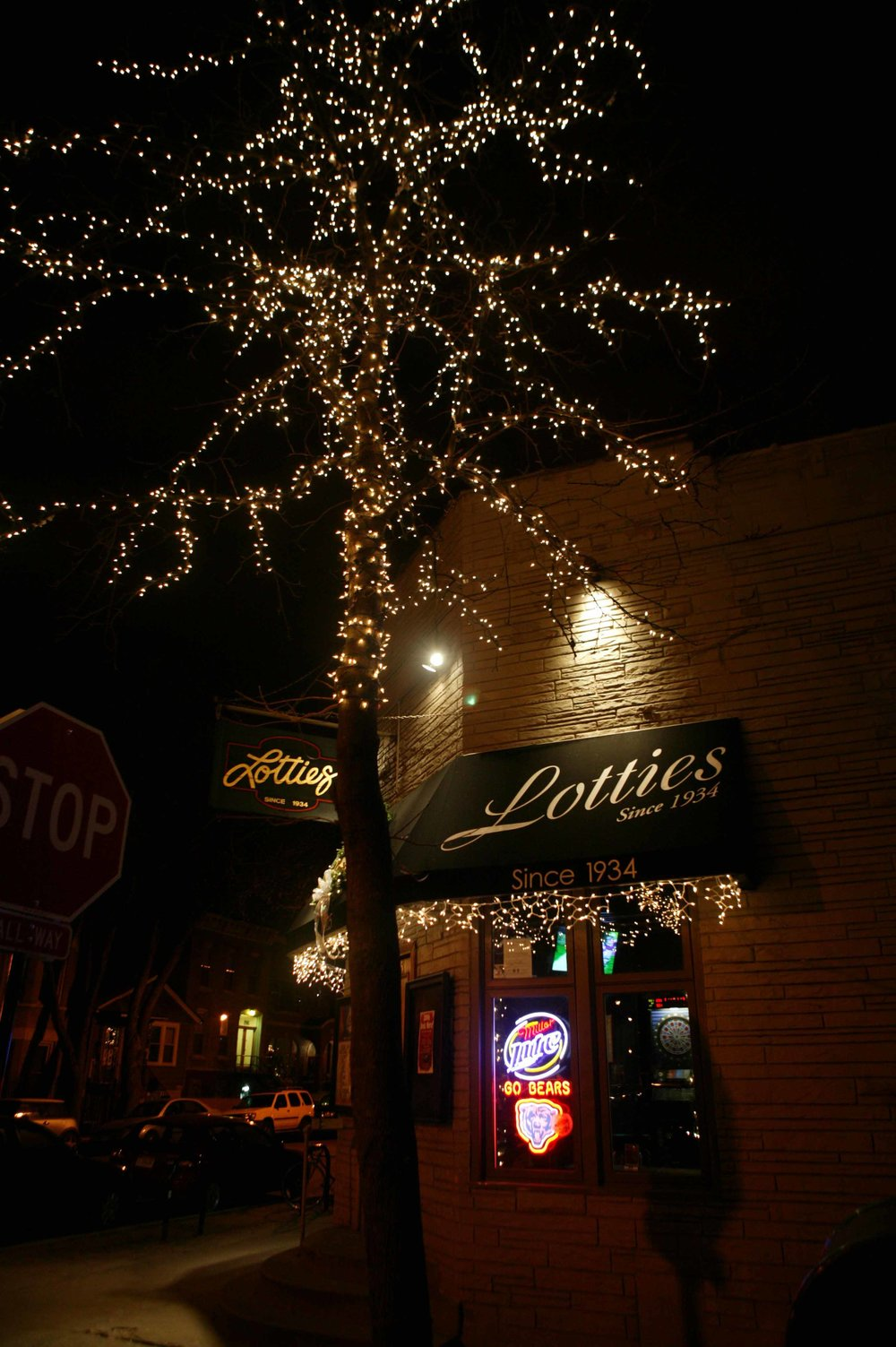 Holiday Lighting Installation Famous Chicago Places