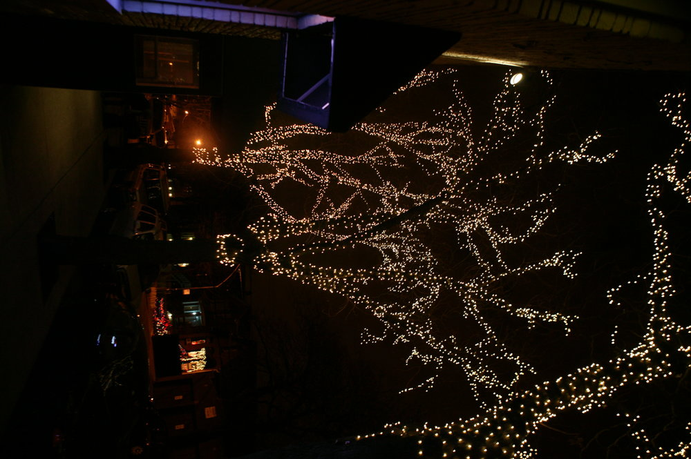 Commercial Holiday and Christmas Lighting Installation