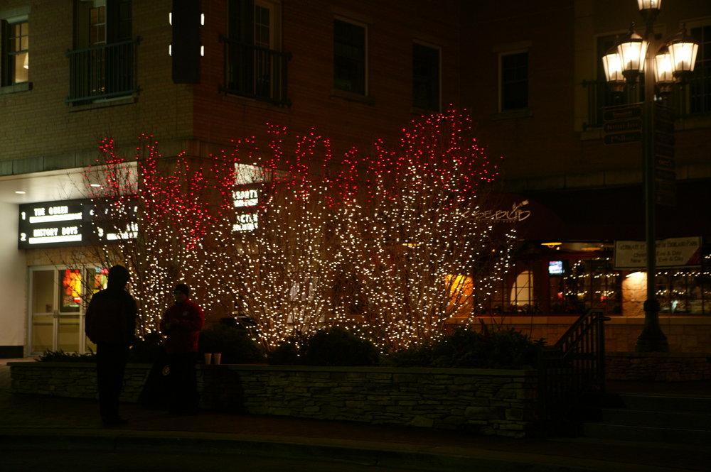 lights.2 027.jpg