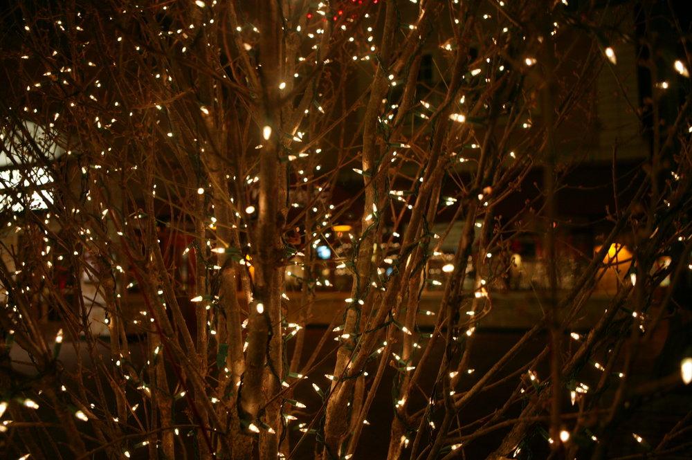lights.2 032.jpg