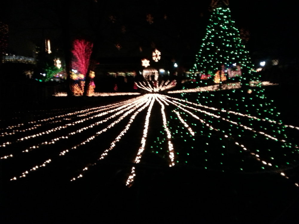 Premium Holiday Lighting Show