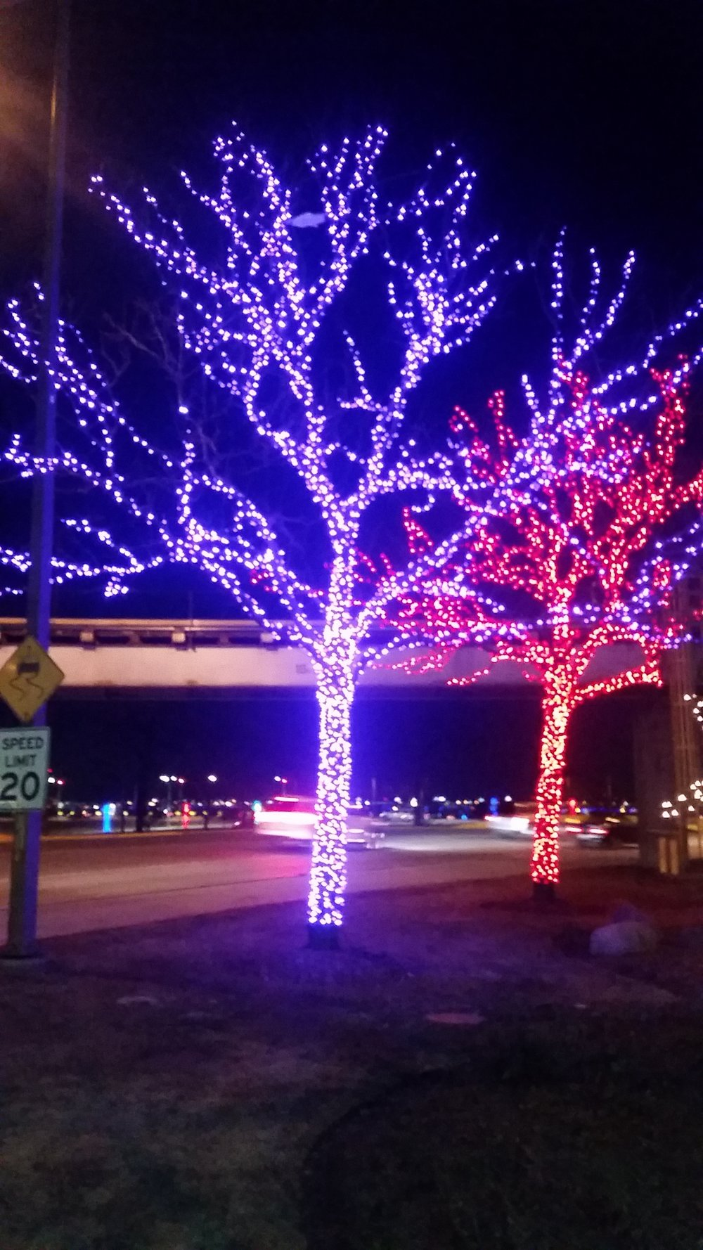 Commercial holiday lighting installers in chicago