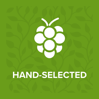 Hand-Selected.png