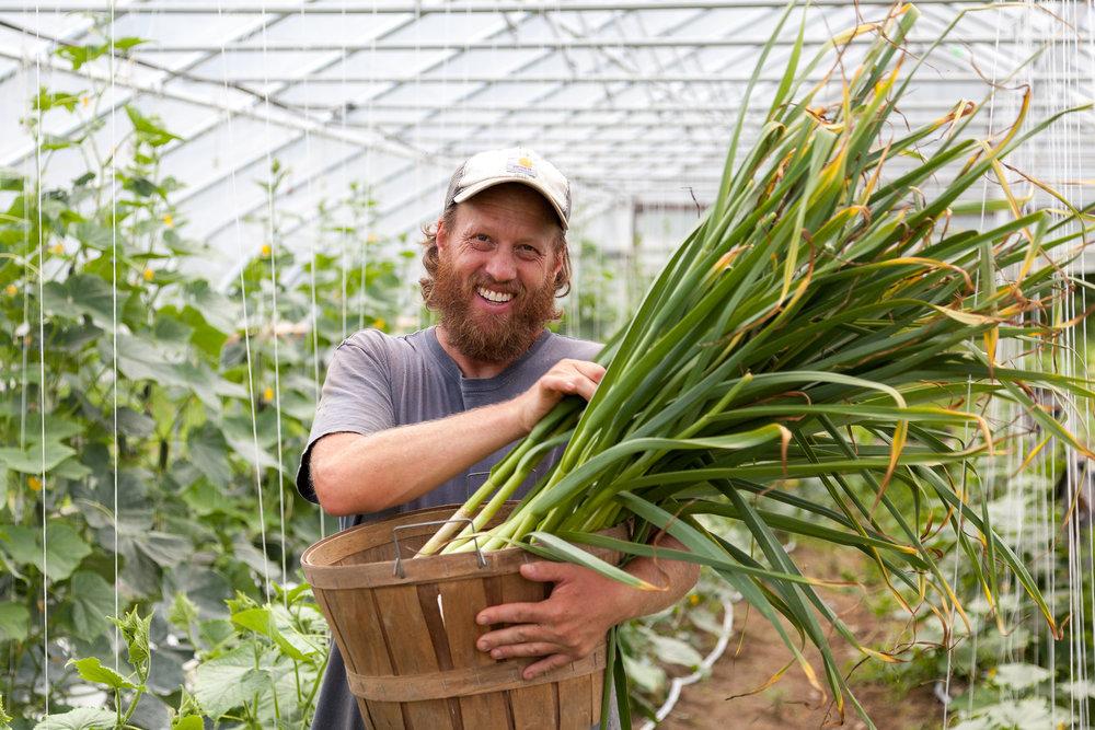 Farmer John's Plot