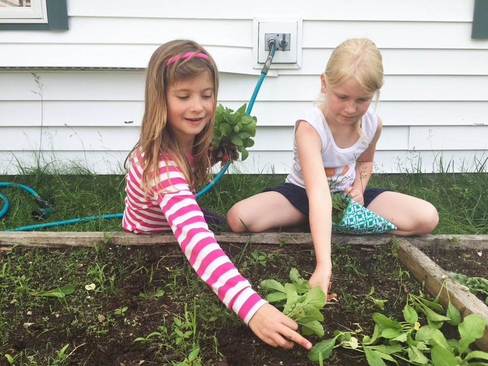 Discover   Farm to School    Sign up for our FTS Newsletter