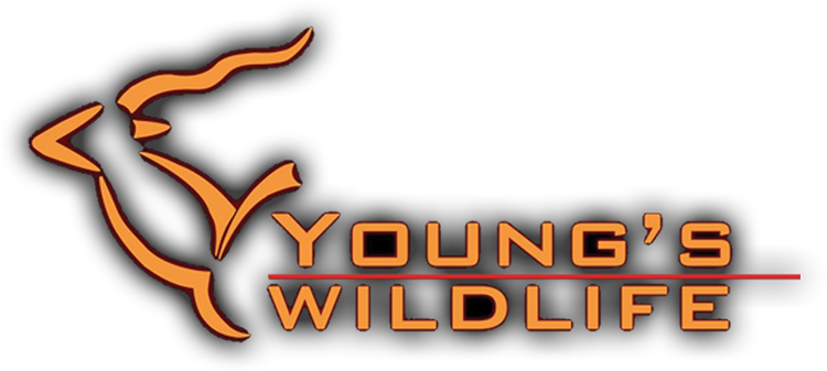 YOUNGSwildlifelogo.png