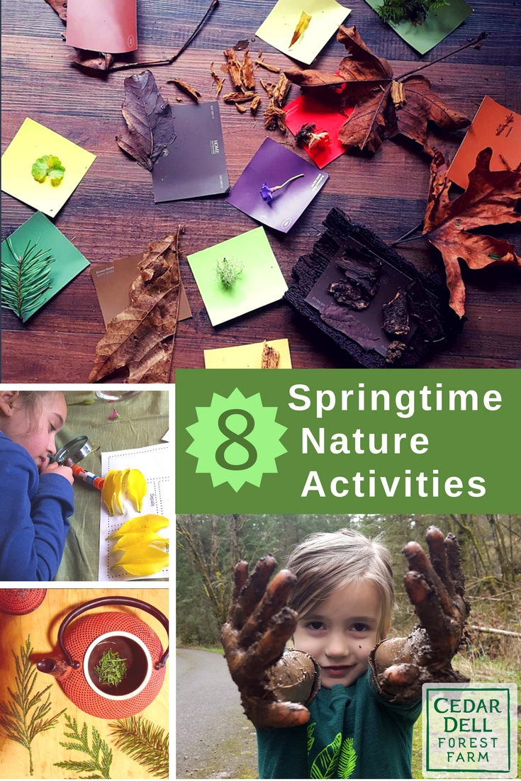 spring nature activities for kids.jpg