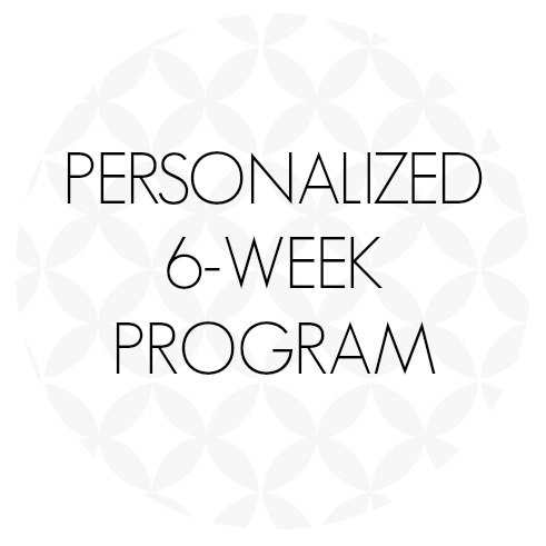 6weekprogram.png