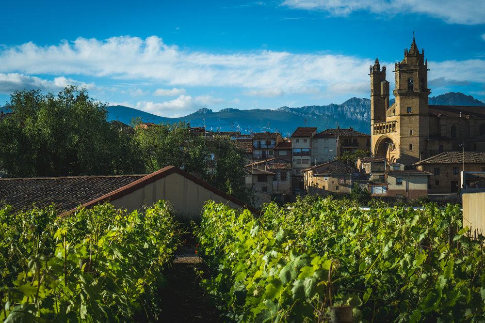 Rioja landscape.jpg