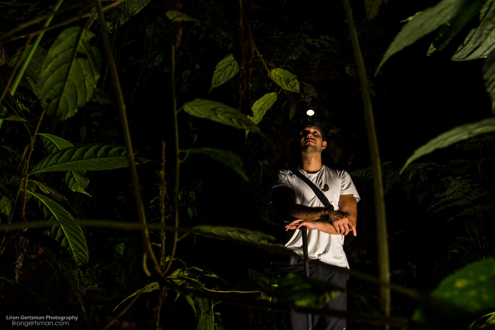 Researchers including Alejandro Arteaga from the Tropical Herping team are studying the herps found in this area. The team has down much exploration and research, and their work has led to the discovery of multiple species new to science.