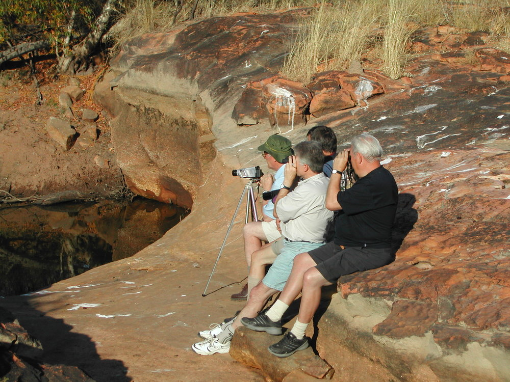GERMAN BIRDWATCHERS AT A WATERHOLE NEAR KATHERINE