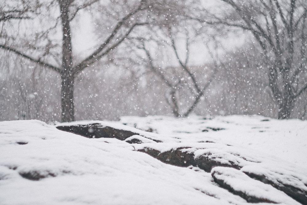 Snowstorm in Manhattan. Fuji X-Pro 1, Helios 44-4.