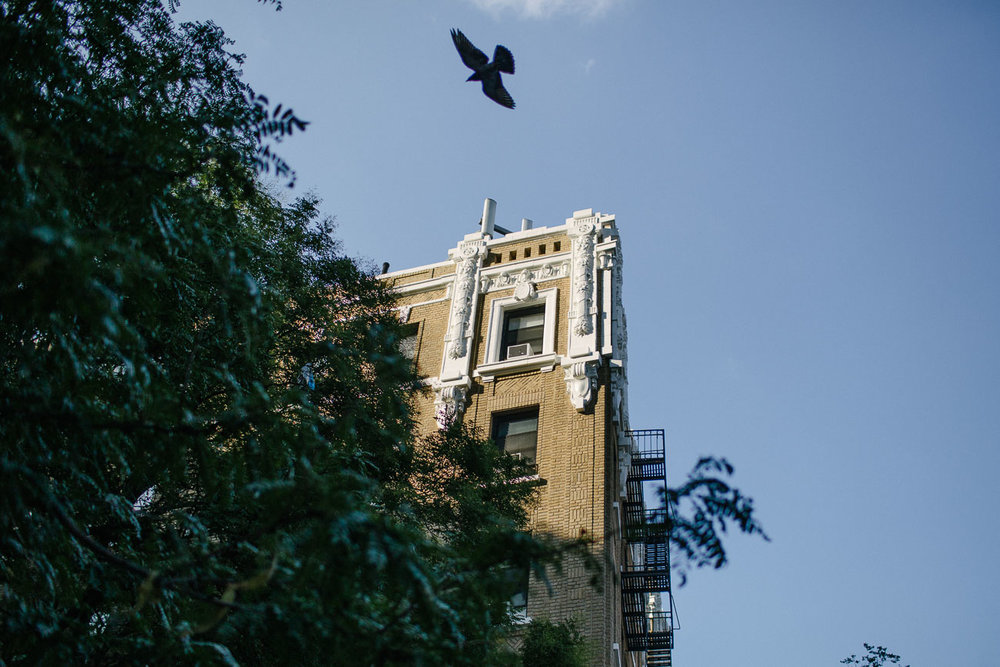 A bird and building in Washigton Heights. Canon 6D, Canon 35mm f/1.4 L USM