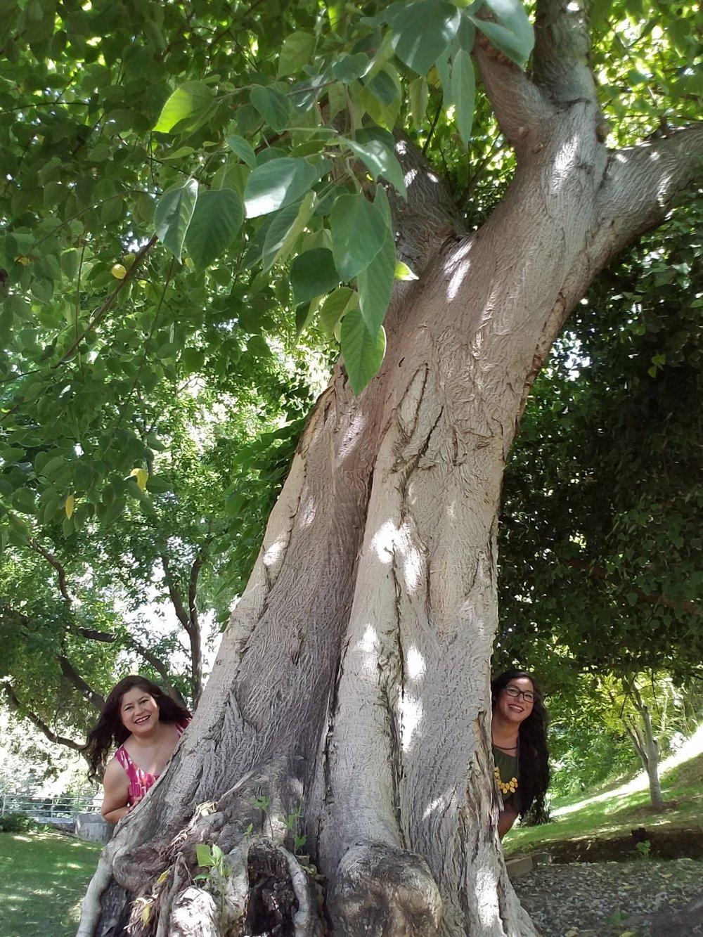 Tree goofing