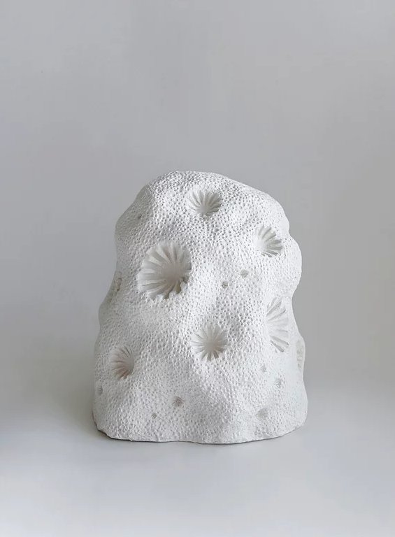 Coralise , by Jessica Gregory, is a 3D printed organic form made from calcium carbonate from coral skeletons.