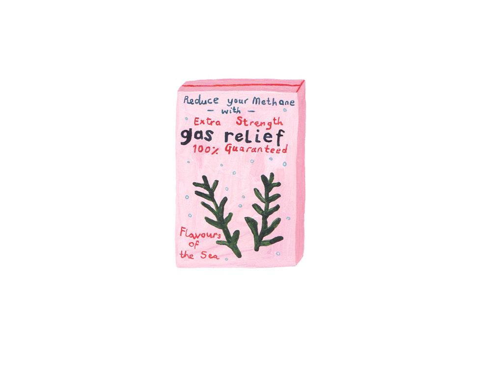 Seaweed image 15 - gas relief.jpg