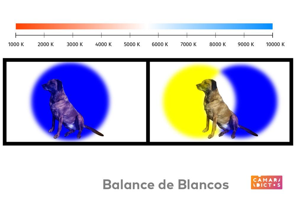 Balance de Blancos-03.jpg