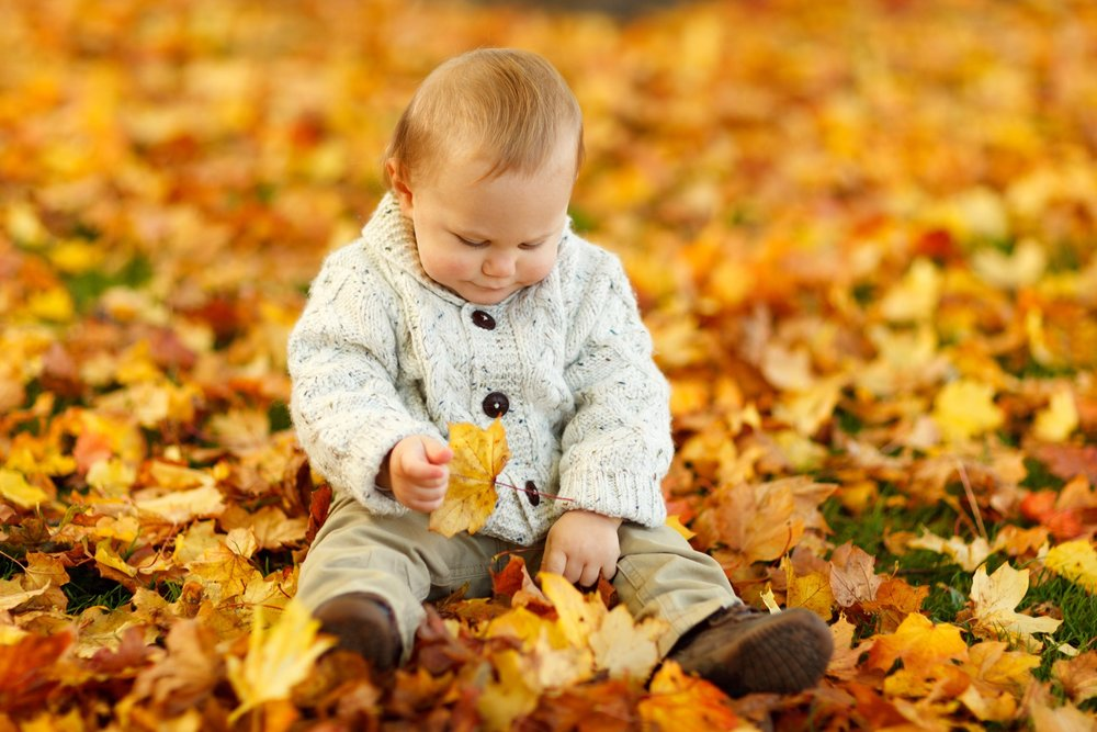 autumn-fall-baby-boy-child-40893.jpeg