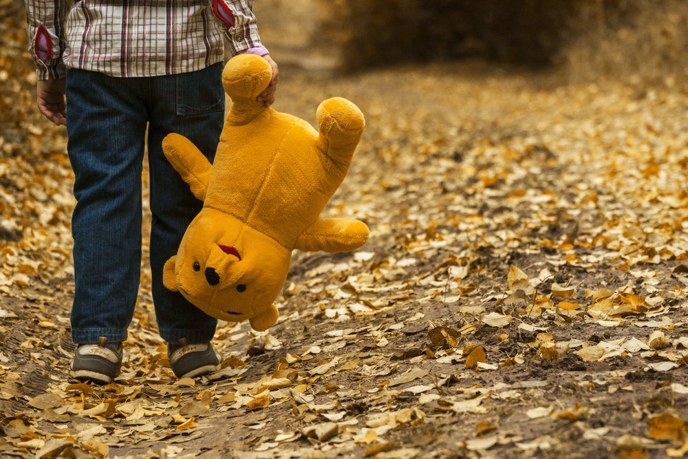 child-autumn-bear-leaves.jpg