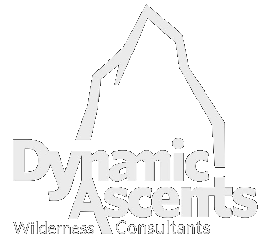 Dynamic Ascents