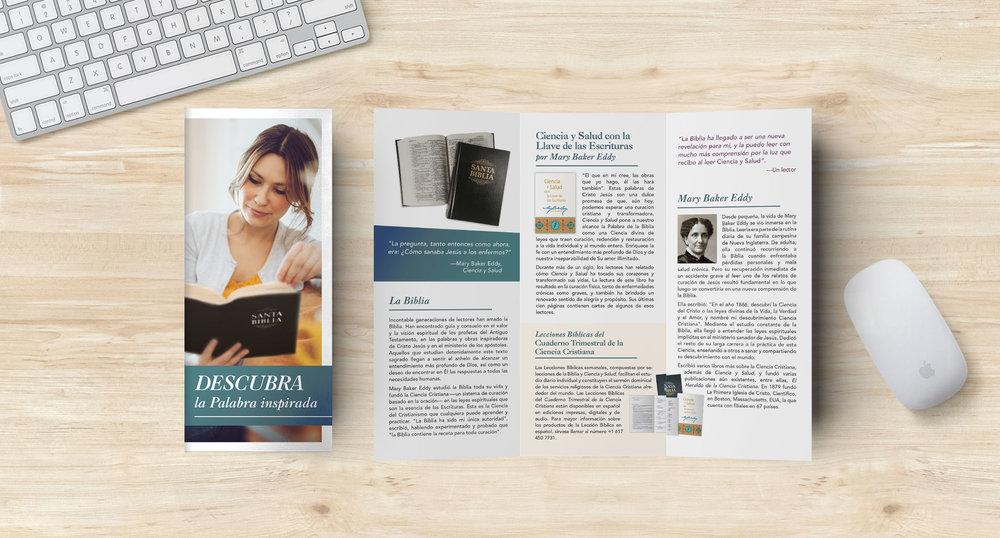 OPA Brochure-SP.jpg