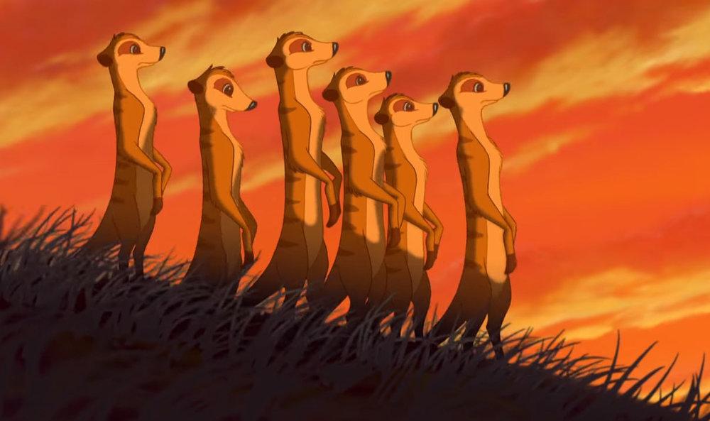 lionking_meerkats1.jpg