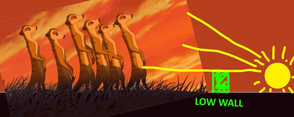 lionking_meerkats2.jpg