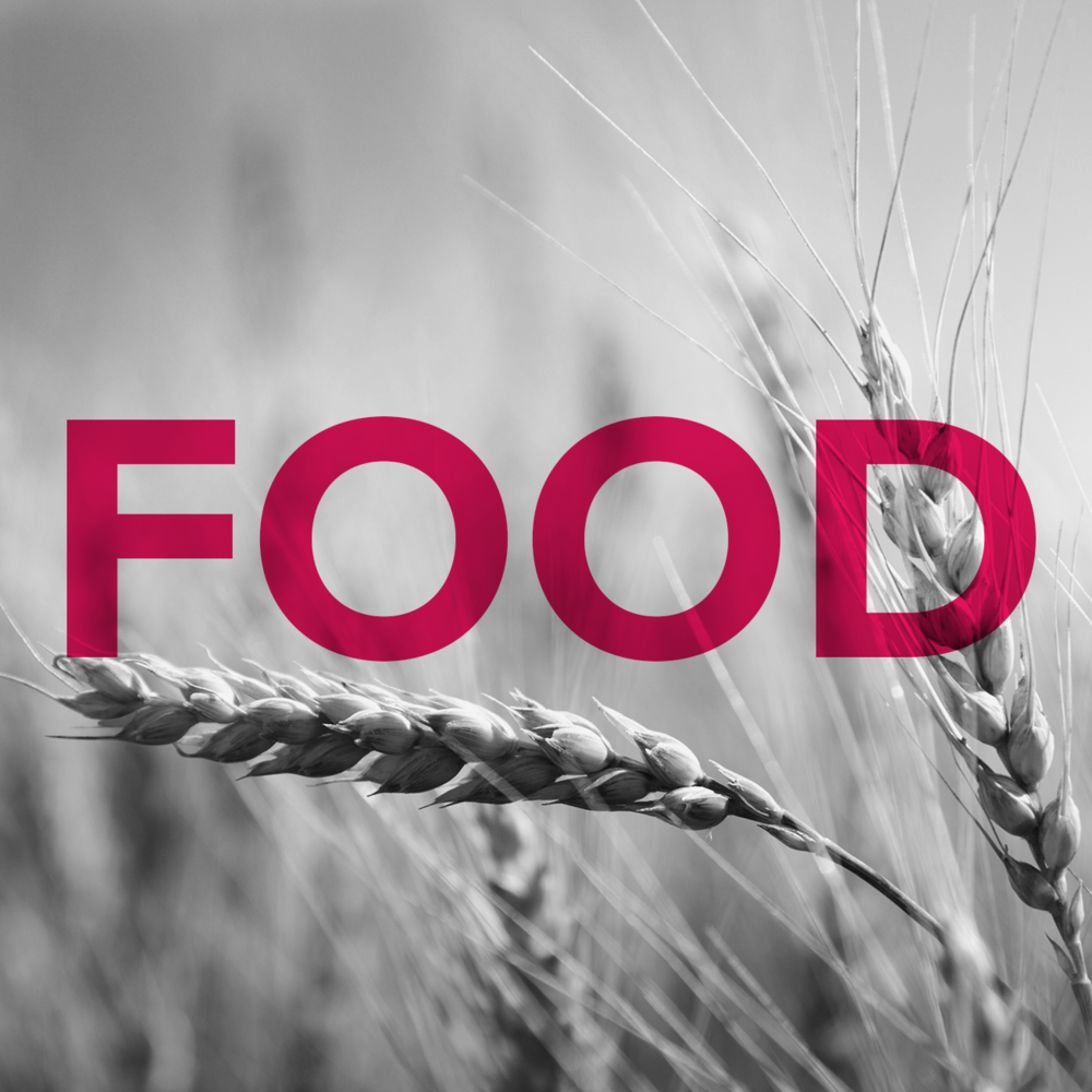 M18_Food.png
