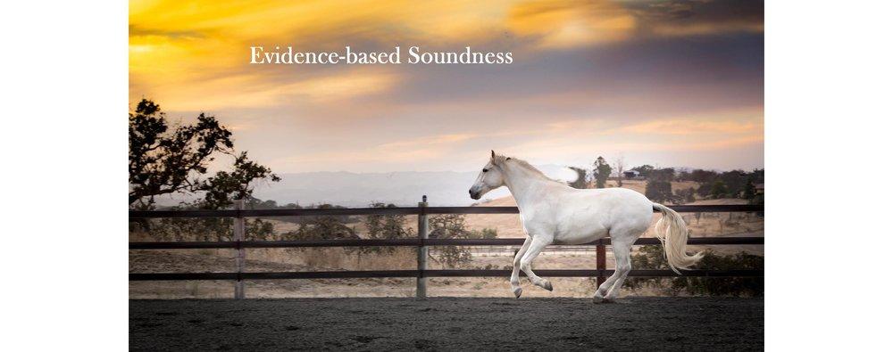 EponaMIND Horses-252.JPG