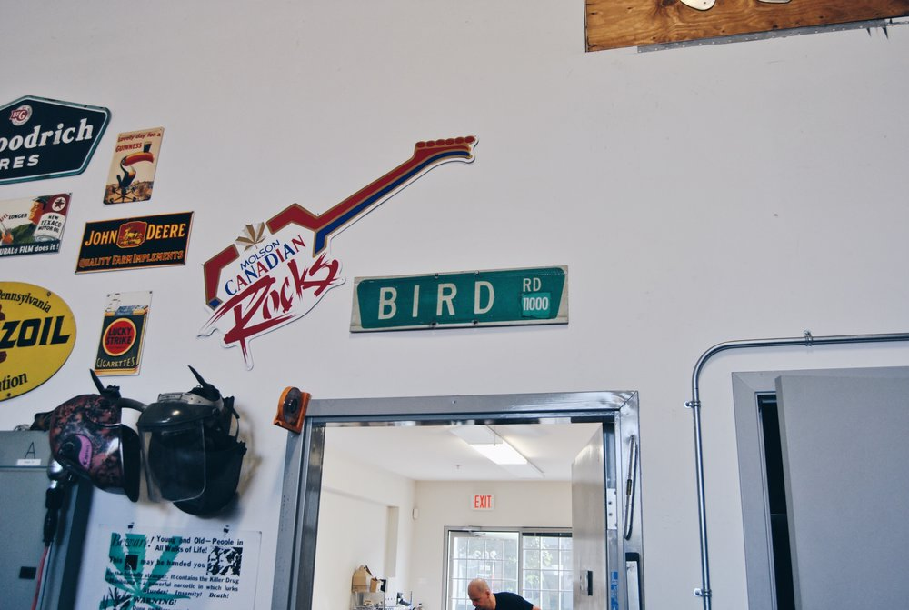 Birdman03.jpeg
