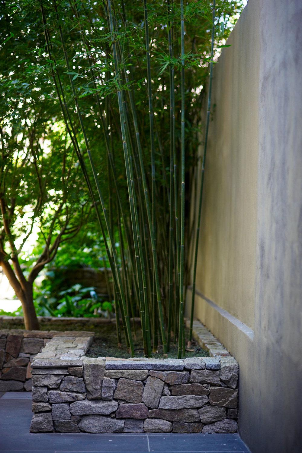 Photo Secret Gardens of Sydney