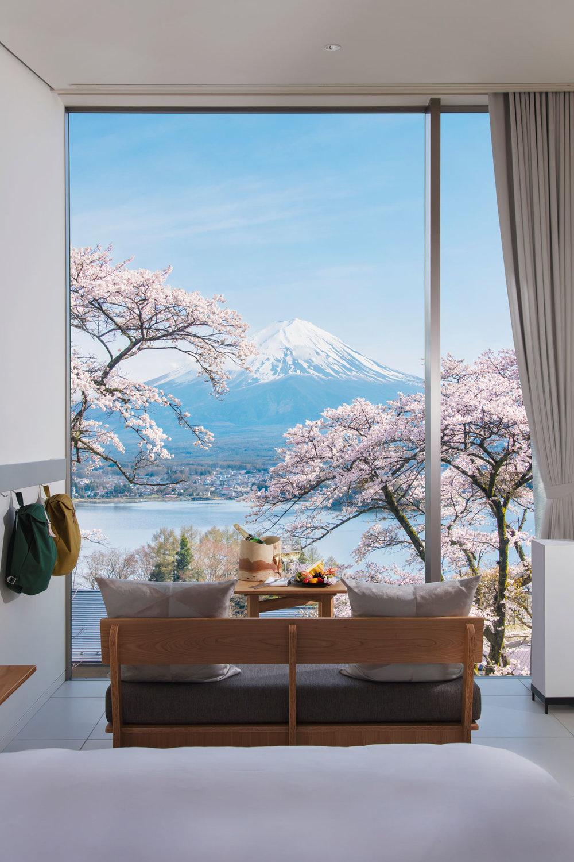 The breathtaking view of Mt Fuji from Hoshinoya Fuji Hotel during sakura (cherry blossom season).