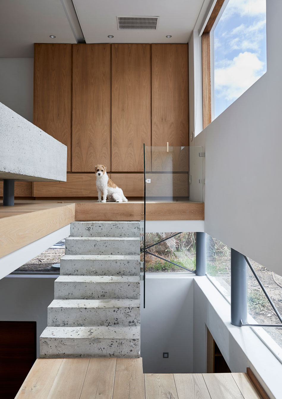 Toska the long-legged wire-haired Jack Russel Terrier blends in perfectly with the home‮!&‬s minimal colour palette‭.‬