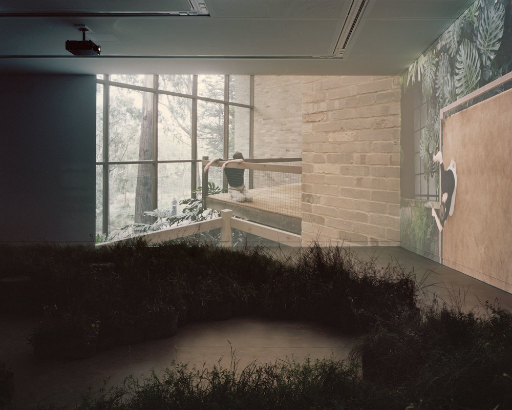 Silent, two-channel videos simultaneously present different perspectives of selected projects by Australian architectural practices. Image: Rory Gardiner
