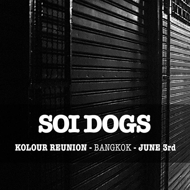 #SOIDOGS @ @wearekolour #Reunion